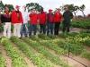 proyecto-integral-socialista-para-el-desarrollo-y-transferencia-de-tecnologia-en-el-cultivo-de-soya2.jpg